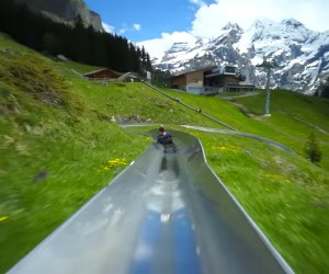 Swiss Mountain Coaster