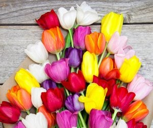 Deal: Bouqs Spring Flower Bouquet