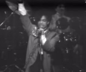 Prince in Concert: 1982