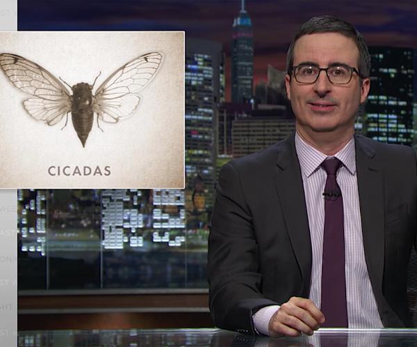 LWT: Cicadas