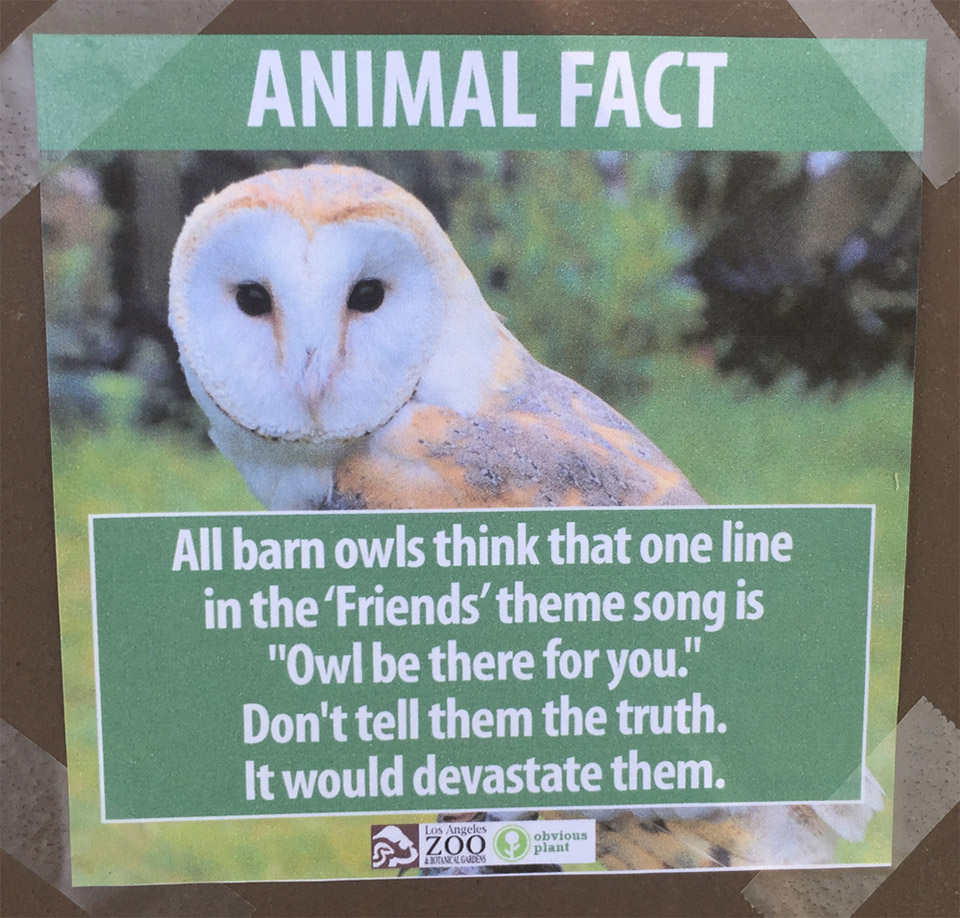 Obvious Plant Visits the Zoo