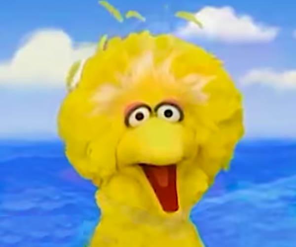 Sesame Street Summertime