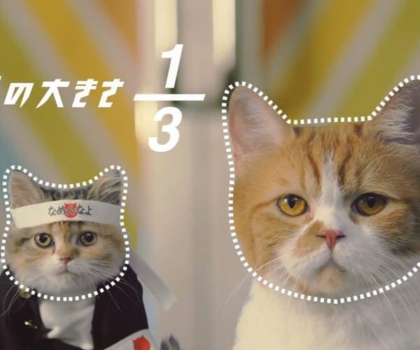 Weird Japanese Commercials