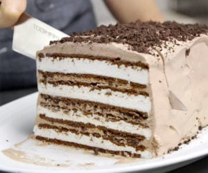 DIY Ice Cream Sandwich Cake