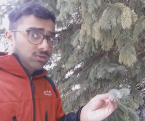Ashwin Enjoys Nature