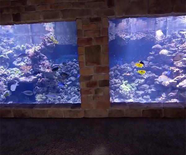 DIY 20,000 Gallon Home Aquarium
