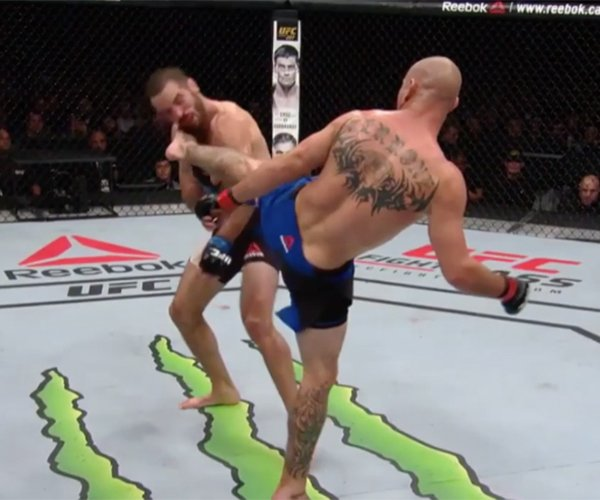 Great MMA Knockouts 2016