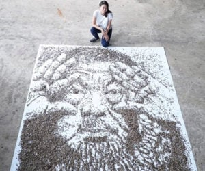 Painting with Seeds