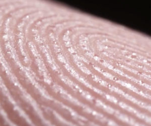 Sweating Fingerprint