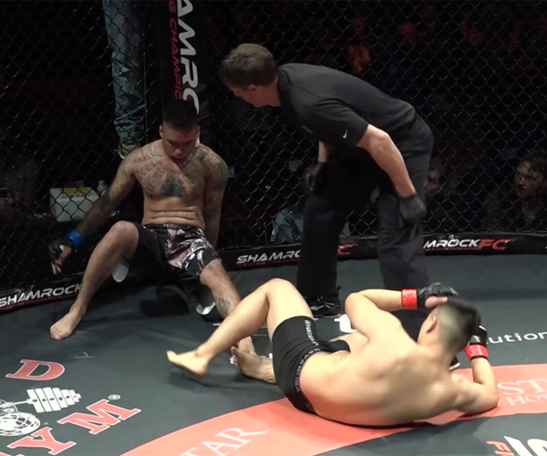 MMA Double KO