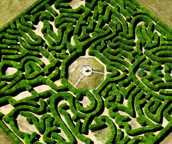 The Master Maze Maker