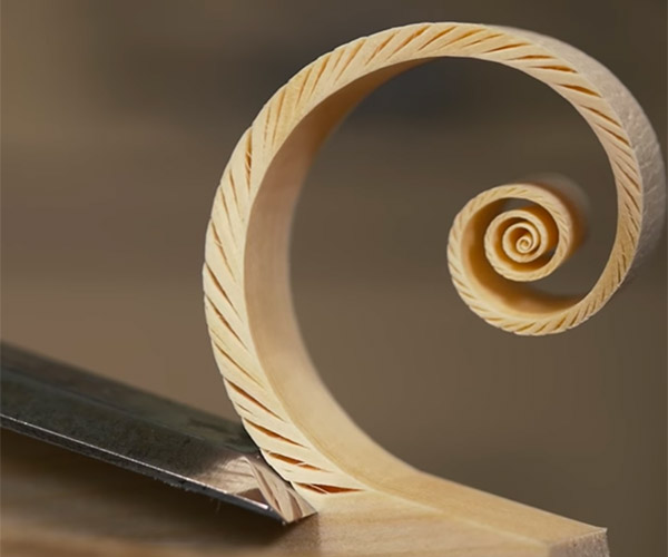 Shaving Fibonacci Spirals