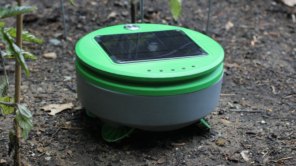 Tertill Robotic Weed Whacker