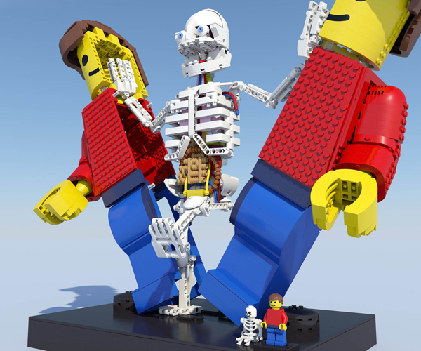 LEGO Anatomini Concept