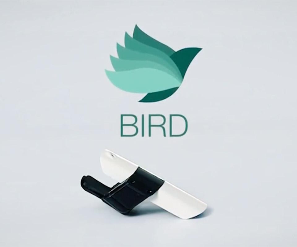 BIRD Gesture Controller