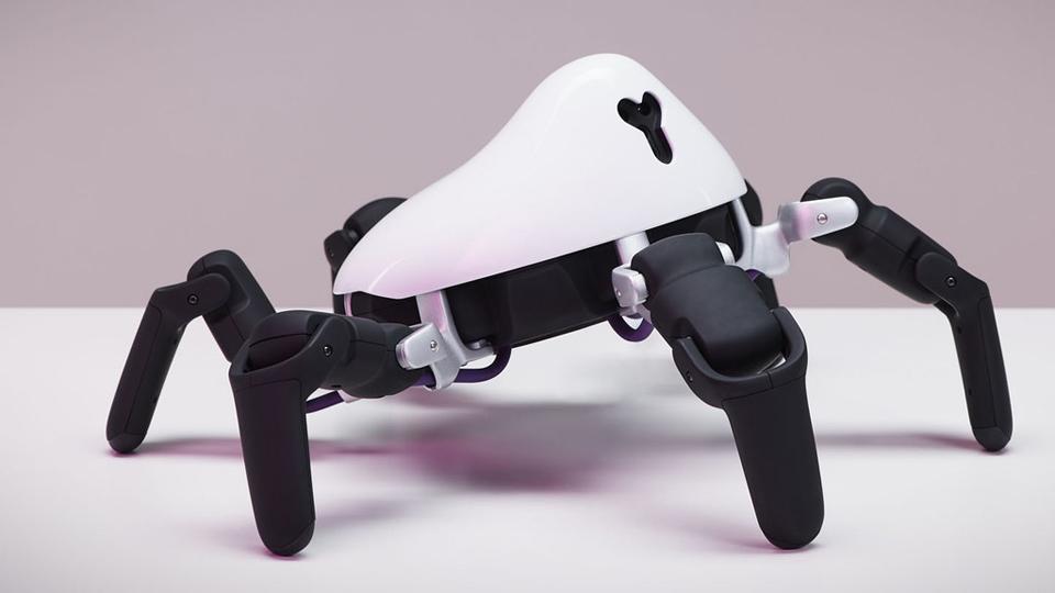 HEXA All-Terrain RC Robot