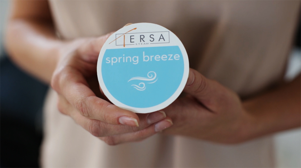 Tersa Steam Clothes Cleaner
