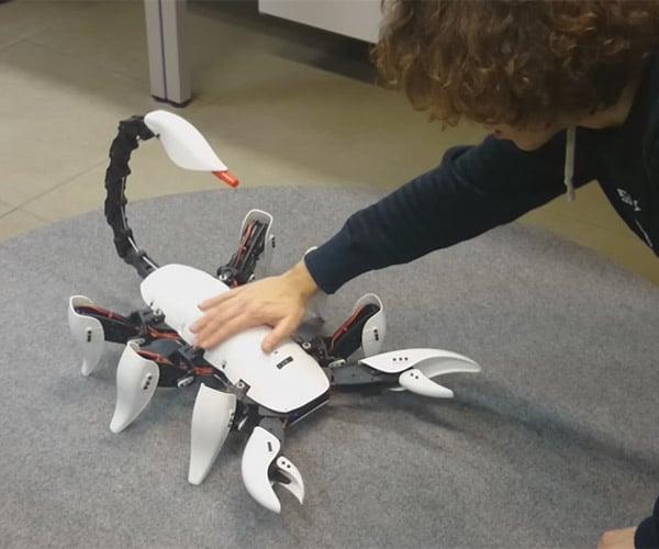 Scorpion Hexapod