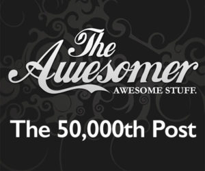 The 50,000th Post