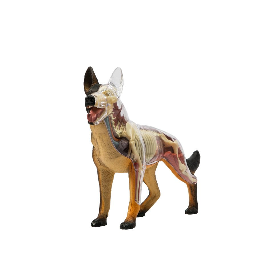 Mighty Jaxx Dissected K9 Figure