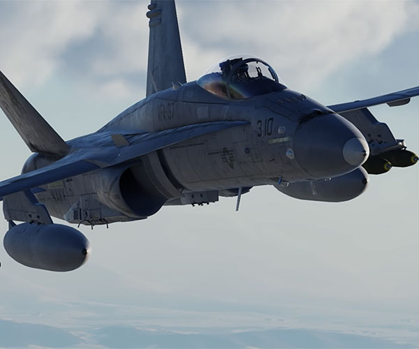 DCS: F/A-18C Hornet