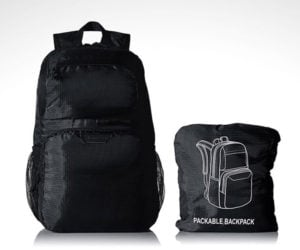 10 Great Packable Bags