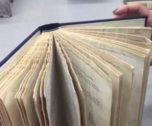 How to Save a Wet Book