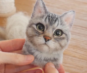 Making a Needle-felted Cat