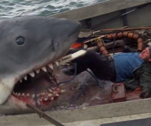 The Hidden Meaning in Jaws