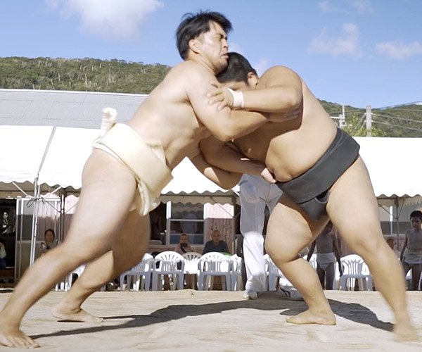 Welcome to Sumo Island