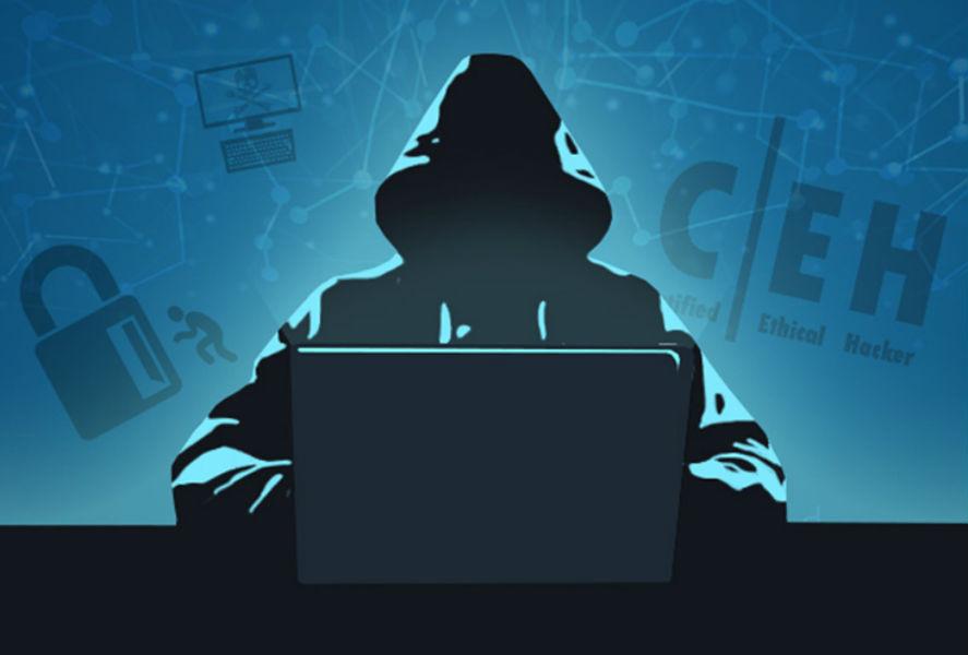 Ethical Hacking Training Bundle