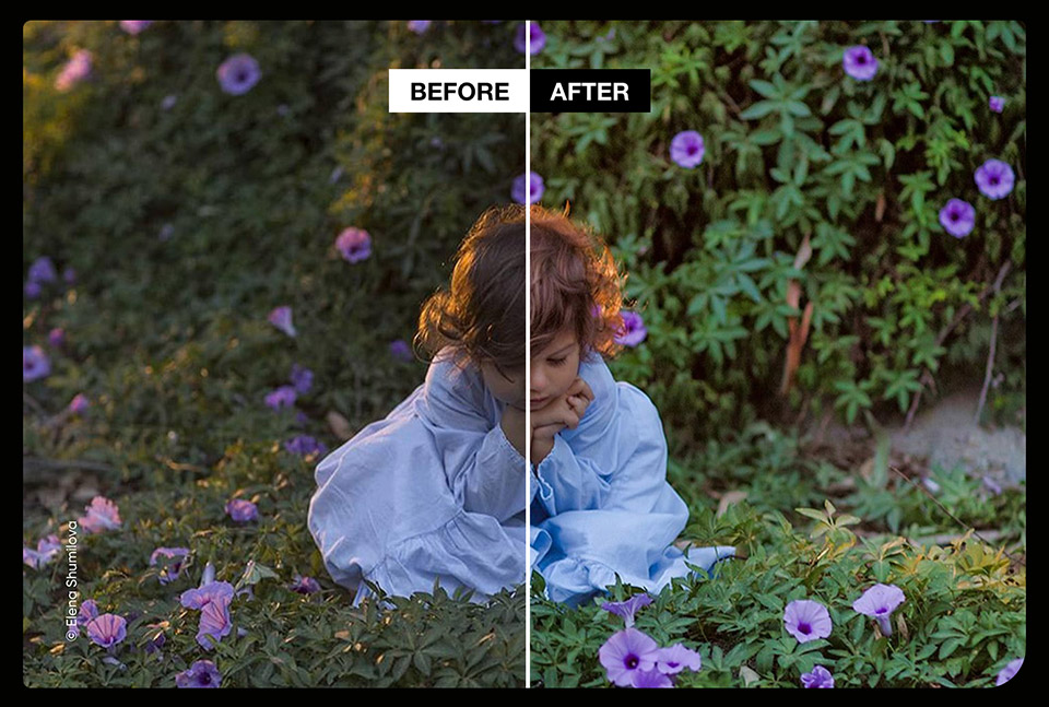 Save Big On Photolemur 3 And Enhance Your Photos Automatically