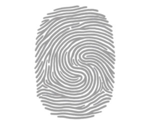 Why Are Your Fingerprints Unique?