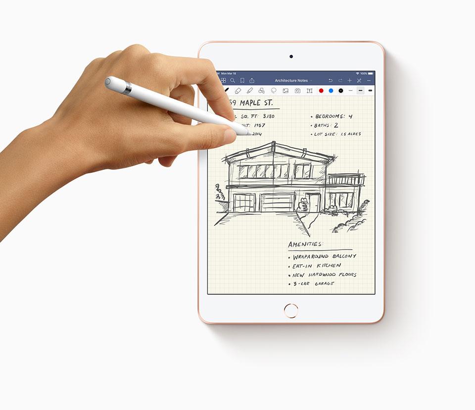 2019 iPad Air & iPad Mini