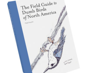 The Field Guide to Dumb Birds