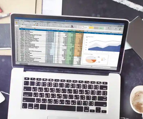 Excel Data Analyst Training