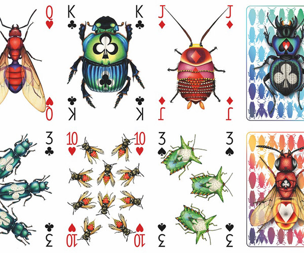 Insecta Playing Cards