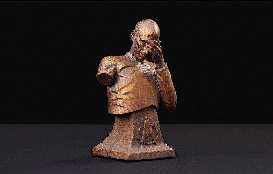 Facepalm Bust: Bronze Edition