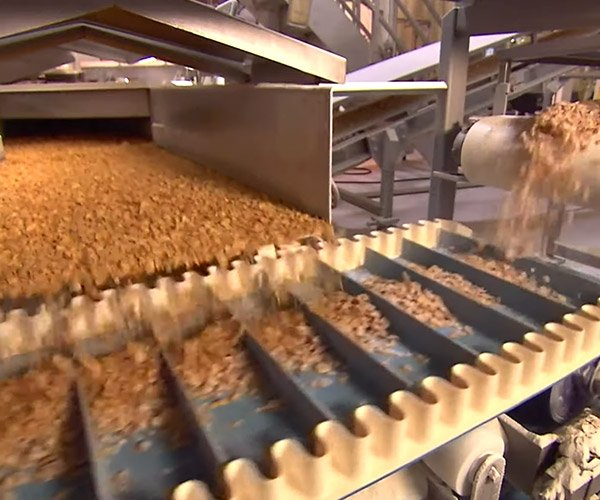 How Frosted Cereal Is Made