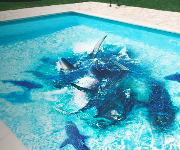 If You Fell Into a Pool of Sharks