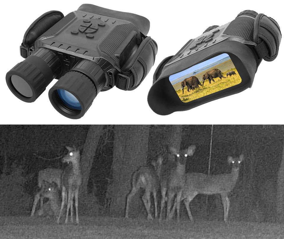 Digital Night Vision Binoculars