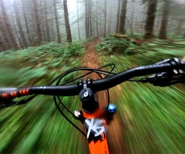 Foggy Forest Mountain Bike POV