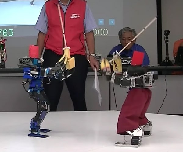 Robot Sword Fight