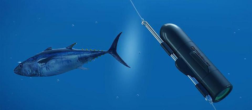 GoFish Underwater Fishing Camera