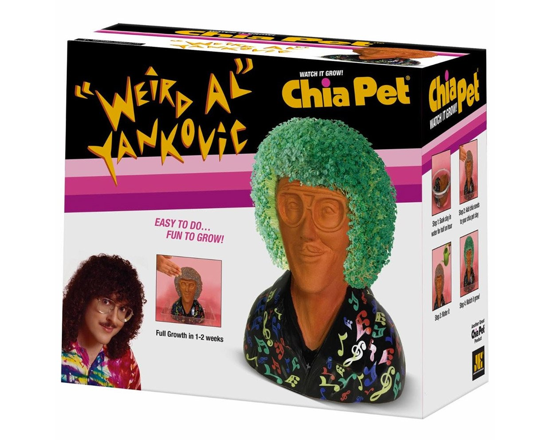"""Weird Al"" Chia Pet"