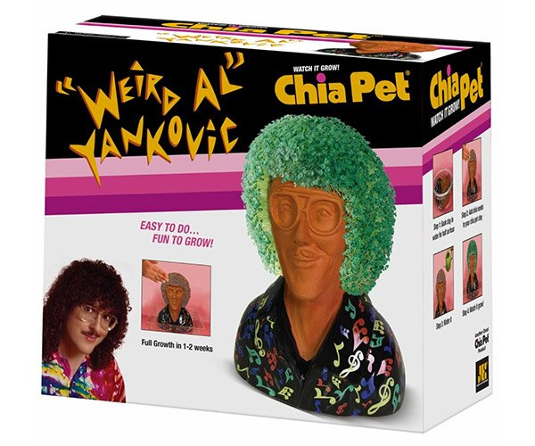 """Weird Al"" Chia Pet"