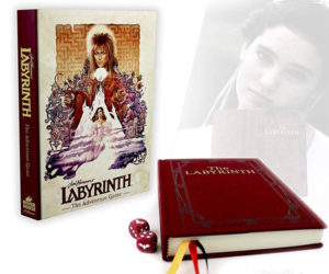 Labyrinth: The Adventure Game