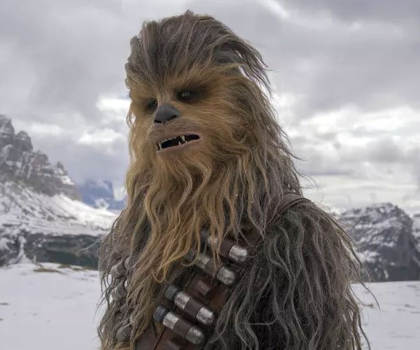 Chewbacca's Backstory