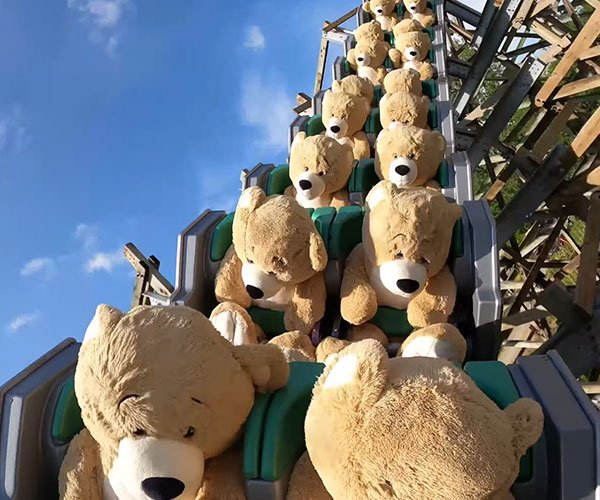 Teddy Bear Roller Coaster