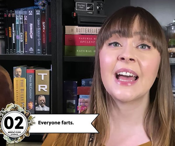 Facts About Farts